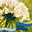 Palliative Care und Begleitung der Aargauer Landeskirchen